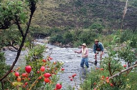Guided Fly Fishing Packages
