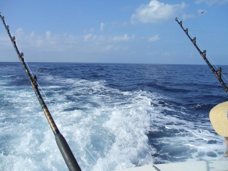 Deep Ocean Fishing Cape Town