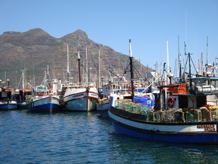 Hout Bay Fishing