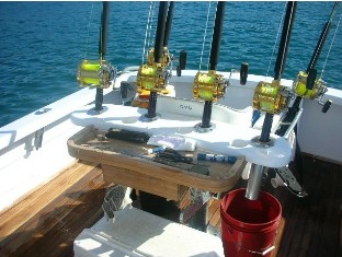 Deep Sea Trolling - FishingInfo.co.za